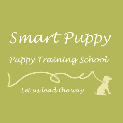 Smart Puppy School